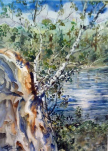 BIRCHES OF ALGONQUIN (on Yupo Paper) 11 x 15 inches $165