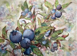 WILD BLUEBERRY PATCH
